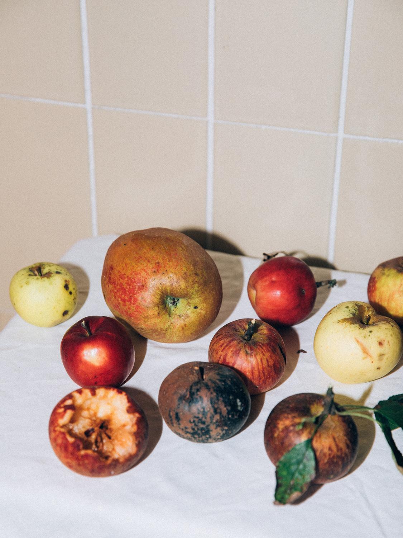 Amelie Niederbuchner Food